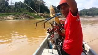 Mat Jea - mancing udang galah sungai Kuala Gris Kelantan
