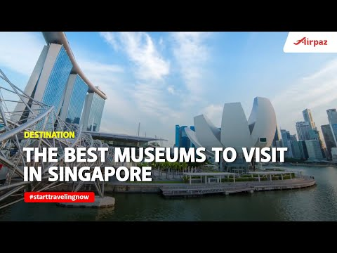 The Best Museums to Visit in Singapore