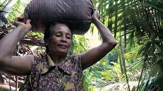 Securing customary rights to forests in Maluku Province, Indonesia
