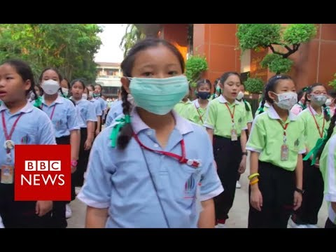 Mongolia: A toxic warning to the world - BBC News