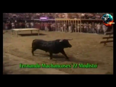2006 08 26 YATOVA FERNANDO MACHANCOSES MODISTO