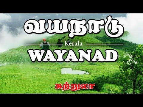 wayanad kerala trip  / வயநாடு - சுற்றுலா