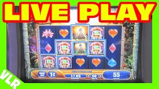 Jungle Wild 3 - Slot Machine LIVE PLAY - Freeplay Friday Episode 53