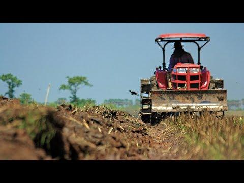 Agricultura e mineração impulsionam crescimento da indústria no Pará | SBT Brasil (17/02/18)