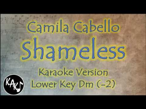 Camila Cabello - Shameless Karaoke Instrumental Lyrics Cover Lower Key Dm