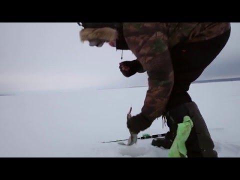 рыбалка волга налим