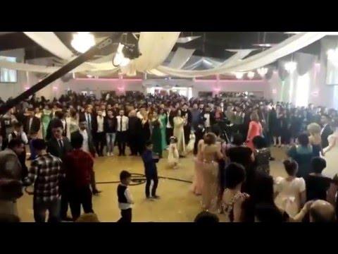 Yeziden Hochzeit kurd