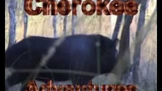 pig hunting video  buffalo hunting video northern territory australia