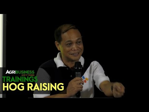 Hog Raising: Profitable Hog Raising CJ Philippines | Agribusiness How It Works Trainings