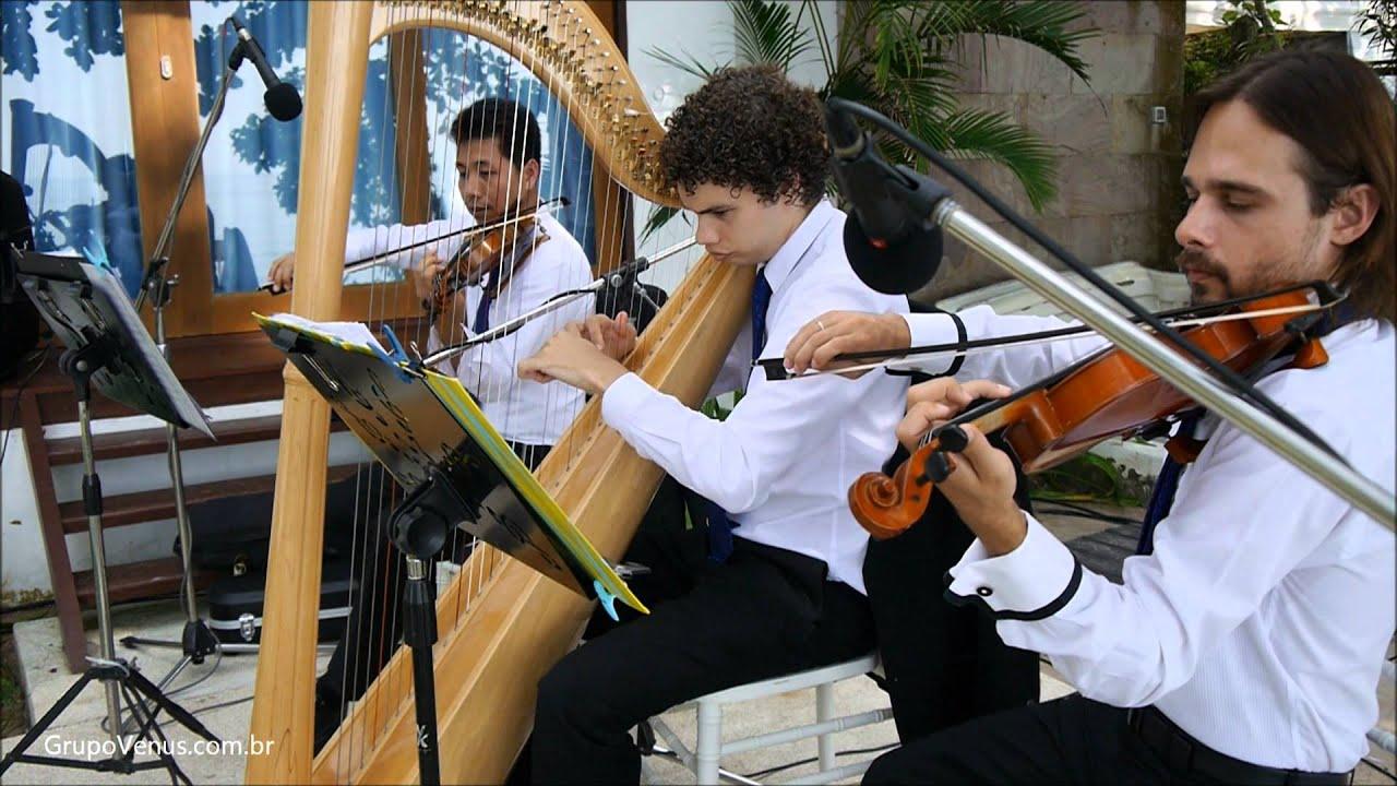 Canon In D Pachelbel On Violino
