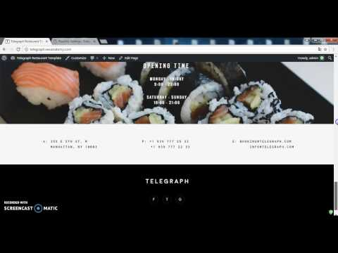 Telegraph - Restaurant Wordpress Template (SEO Settings)