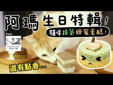 【黃阿瑪的後宮生活】阿瑪11歲生日特輯!貓吃的抹茶蜂蜜蛋糕?ft.好味小姐