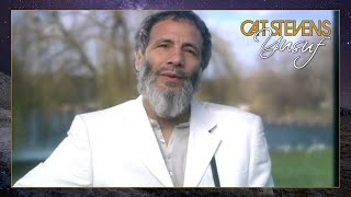 Yusuf / Cat Stevens – Midday (Avoid City After Dark) (Official Video) | An Other Cup