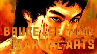 bruce lee martial arts tribute awake and alive