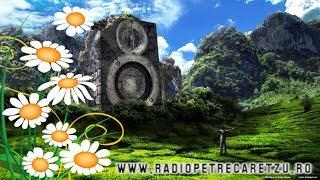 Radio Petrecaretzu LIVE Dj Floryn Hore Sarbe Manele Populara Petrecere 2018
