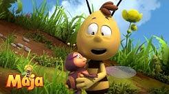Babysitter Willi - Die Biene Maja 🐝🌷