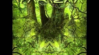 Yar Zaa - Rain Forest