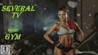 스포츠, 보디 빌딩, 운동, 운동, 피트니스에 대한 동기 부여 음악 💪 Motivational music for sports, bodybuilding ♥️ Several TV