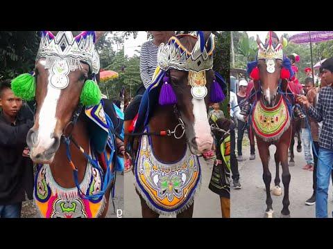 Kuda Renggong ABG