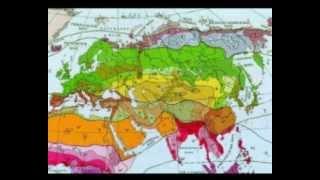География 40. Россия. Часть 1 — Шишкина школа