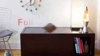 Modern Children, Toddler Bed, Toybox, Bunk Bed Furniture And Organic Bedding By Argington.