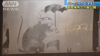 """""""バンクシー?のネズミ""""元に帰る 地元のお役に・・・(19/11/25)"""