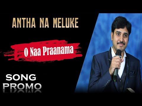 leader naa songs