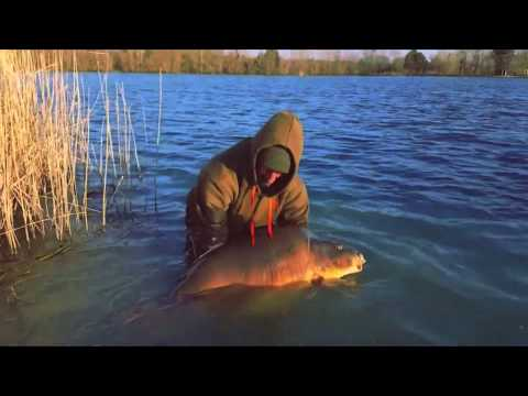 DT Baits' Tom McGregor Catches 'The Brown Fish' Whilst Fishing Graviers Lake