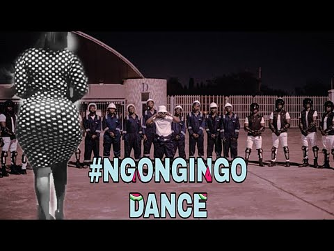 Download Rayvanny Ft Baba Levo - Ngongingo (Official Video Dance)