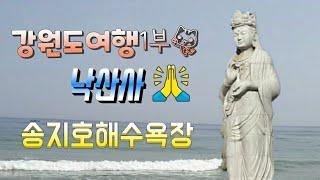 강원도여행1부/낙산사 해수관음상/낙산해수욕장/송지호해수…