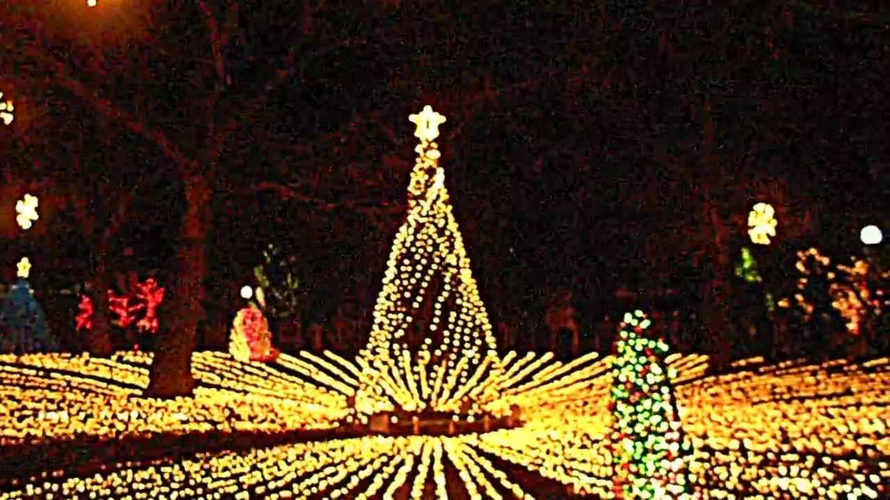 Lincoln Park Zoo, Chicago Christmas Lights 2013! - YouTube
