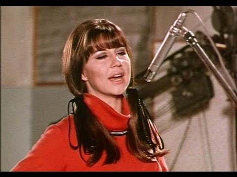 The Seekers - I'll Never Find Another You 1965 STEREO
