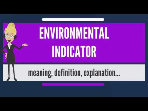What is ENVIRONMENTAL INDICATOR? What does ENVIRONMENTAL INDICATOR mean?