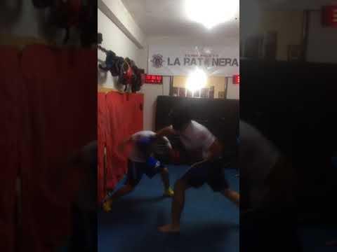 Christian Contreras Elite Fight