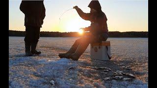 О ТАКОМ КЛЁВЕ ТОЛЬКО МЕЧТАТЬ Рыбалка по последнему льду Вечерний жор рыбы