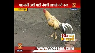 Kolhapur | Unique Alert Plate Beware Of Cock As It Can Harm You