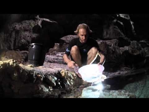 Hinagdanan cave survey