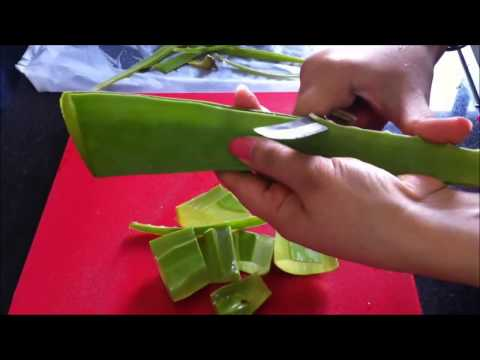 Slow Juice Benefits : DIY Making of Aloevera Gel Juice and its Benefits using Slow Juicer - YouTube