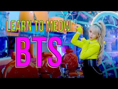 """BTS for """"Learn To Meow""""."""