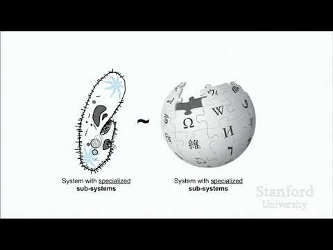 Stanford Seminar - Productive Efficiency, Ideology, and AI in Wikipedia