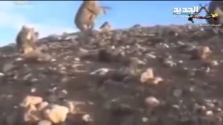 علم حزب الله يرتفع على تلة موسى – ادم شمس الدين  13-5-2015