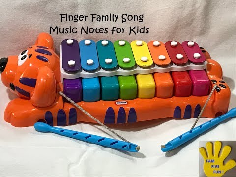 Finger Family Song how to play simple music notes in xylophone