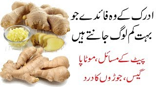 Adrak khane ke Fayde | Ginger se ilaj | Benefits of Eating Ginger in urdu