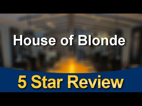 Olaplex House of Blonde Arlington Heights Hair Colorist Exceptional 5 Star Review