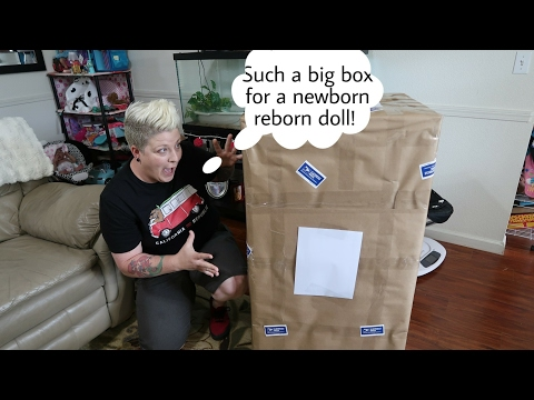 Worlds Biggest Reborn Baby Box Opening! Such A GIANT Box - n