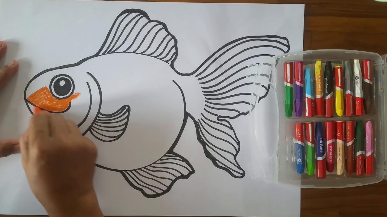 menggambar dan mewarnai ikan koki