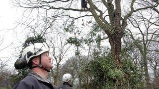 Seilklettern: Die Seilkletterer (Reportage)