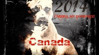Official Video Young Carter -56 Barz ( 613 Generals Music Group.2014 )