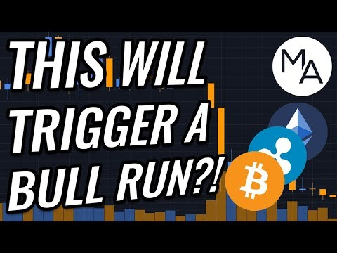 Will THIS Trigger The Next Bull Run In Bitcoin & Crypto Markets?! BTC, ETH, XRP, BCH & Crypto News!
