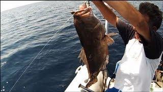 JIGGING 3 grouper snapper sotos fishing.wmv